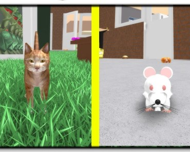 Let's Play A Game Of Cat And Mouse - Roblox Hamster Simulator - lets play a game of cat and mouse roblox hamster simulator