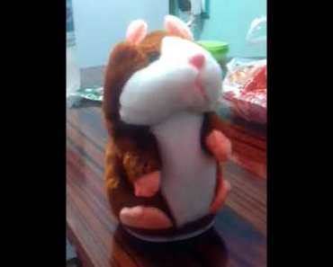 16cm Funny Talking Hamster Mouse Record, BuyInCoins - 16cm funny talking hamster mouse record buyincoins