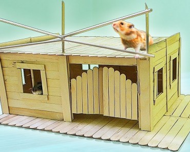 HOUSE FOR A HAMSTER - house for a hamster