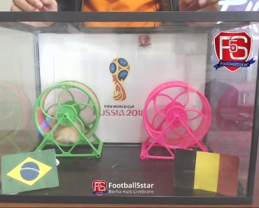 Prediksi Brasil vs Belgia bersama PO si Hamster - prediksi brasil vs belgia bersama po si hamster