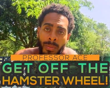 Professor Ace | Get Off The Hamster Wheel! - professor ace get off the hamster wheel