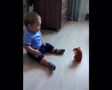 Repeating Hamster - repeating hamster