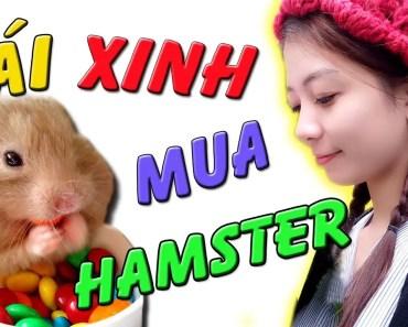 Tony | Cầm 1 Triệu Dẫn Gái Xinh Mua Chuột Hamster - Take Girl To Buy Hamster - tony cam 1 trieu dan gai xinh mua chuot hamster take girl to buy hamster