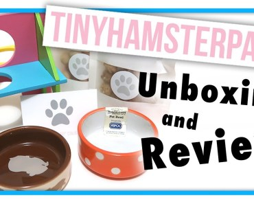 Tiny Hamster Paws Unboxing & Review | Adorable Treats & Supplies! - tiny hamster paws unboxing review adorable treats supplies