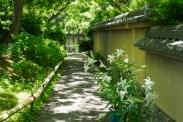 筥崎宮花庭園の写真