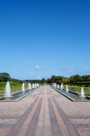海の中道海浜公園の写真