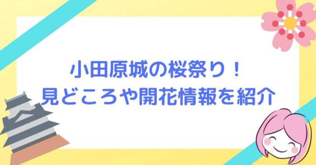 小田原城の桜祭り! 見どころや開花情報を紹介