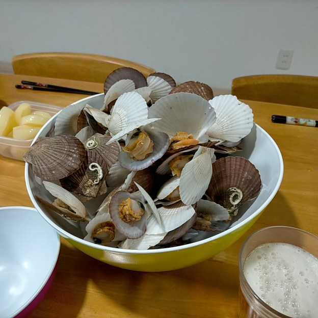 ホタテ稚貝食べ放題