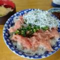 todays seafood bowl negitoro and shirasu bowl