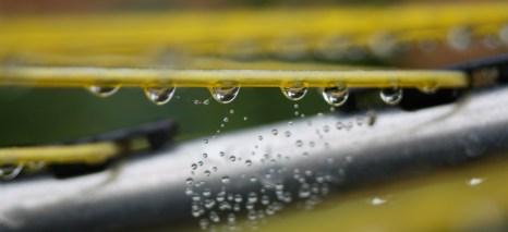 raindrop washing line