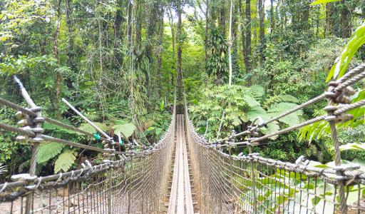 8 activités gratuites en Martinique