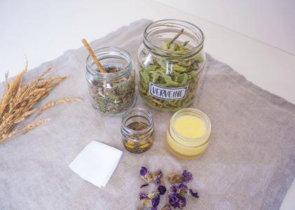 Comment transformer les plantes pour les utiliser dans ses soins ?