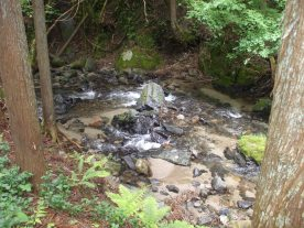 Hanase - River