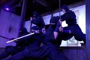 Shinobi No Sato Ninja Village (O) Ninja Show 3