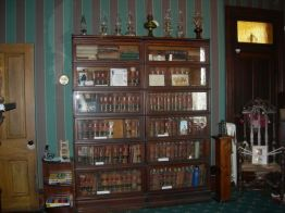 bookcase, library