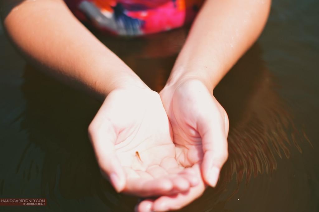 fish in hands