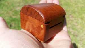 Close up photo of a small wooded box red gum with Beach timber hinge pin