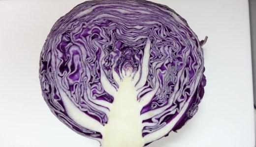 紫キャベツ液の抽出方法〜不思議な色変わりペーパーの作り方〜