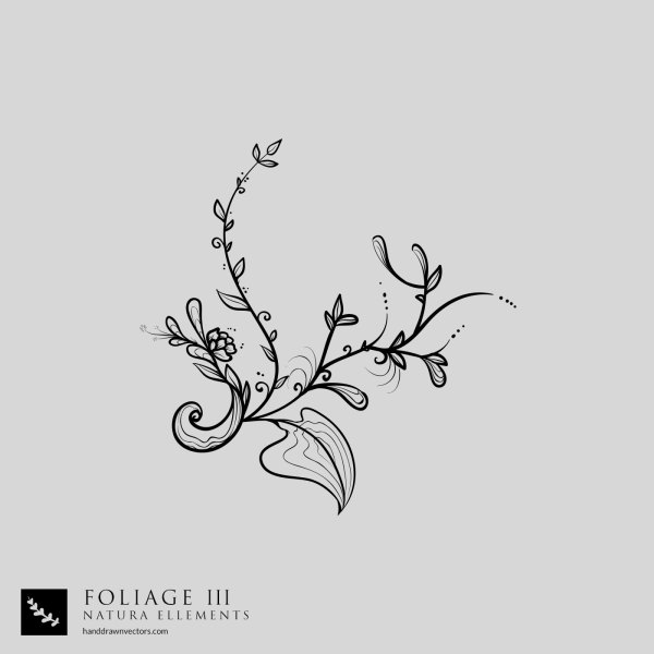 Tree-Branch-Foliage-Vector