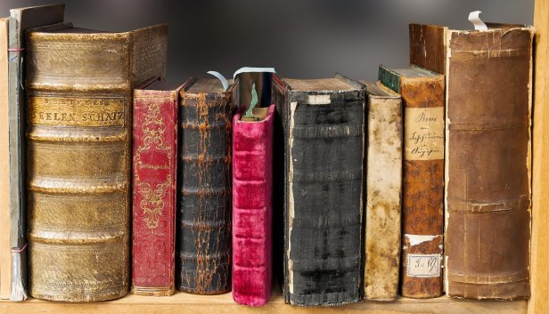 photo de livres anciens rangés sur une étagère