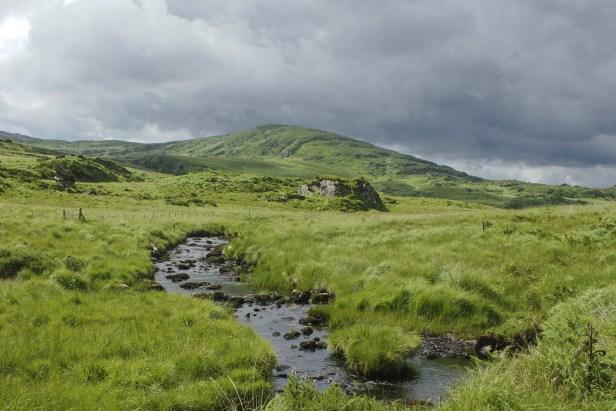Paysage irlandais. Au premier plan, une prairie sauvage d'herbes grasses dans laquelle coule un ruisseau. Au fond, il t a une colline arrondie verte et rocheuse. Le ciel est très nuageux, gris, menaçant.