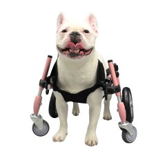 Wheelchair Harness Slipcovers For Club Chairs With T Cushion Dog Wheelchairs Carts