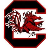 Betting on South Carolina Gamecocks Football