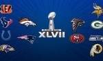 Betting on the 2013 NFL playoffs
