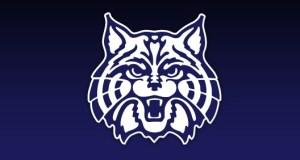 Arizona Wildcats Pac-12 Football