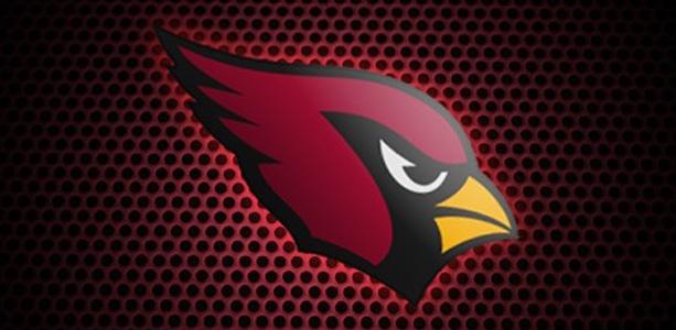 Arizona Cardinals NFL Football