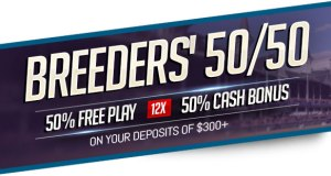 2018 Breeders' Cup 50/50