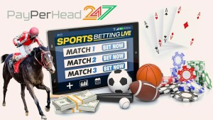 PayPerHead247 PPH Software for Gaming Agent