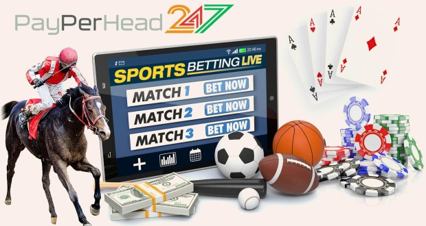 PayPerHead247 Bookie Software Services