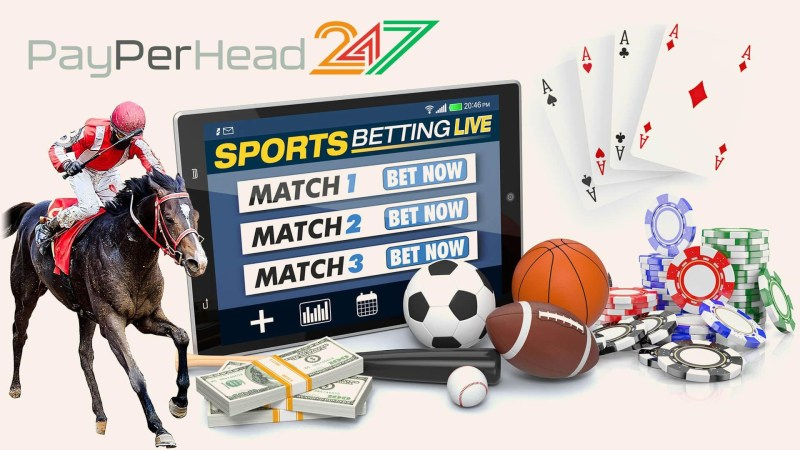 PayPerHead247 Bookies Software Services
