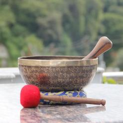 Sound Therapy Singing Bowl