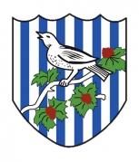 West Bromwich Albion F.C.