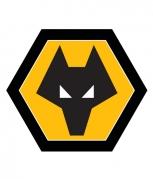 Wolverhampton Wanderers F.C.