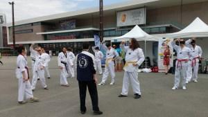 ceci taekwondo à la journée rennaise du sport et du handicap