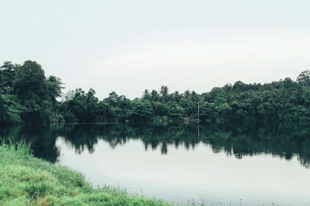 Going Off The Beaten Track in Singapore: Exploring Ubin Island... (20)