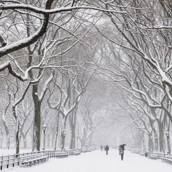 New York City Covered in Snow (1)