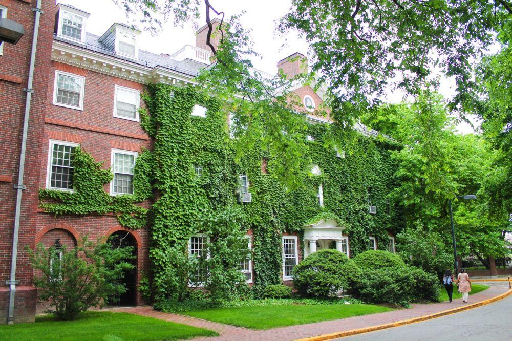 Squirrels, Strawberries And Frozen Yoghurts in Harvard (15)