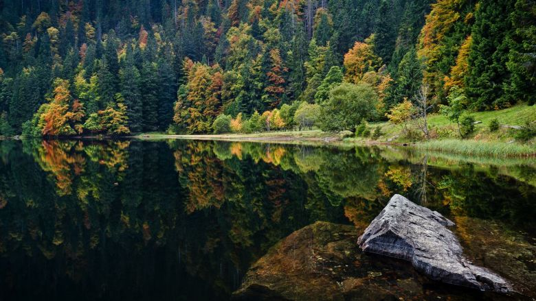 7 Magical Photos That Will Make You Want To Visit The Black Forest In Germany (1)
