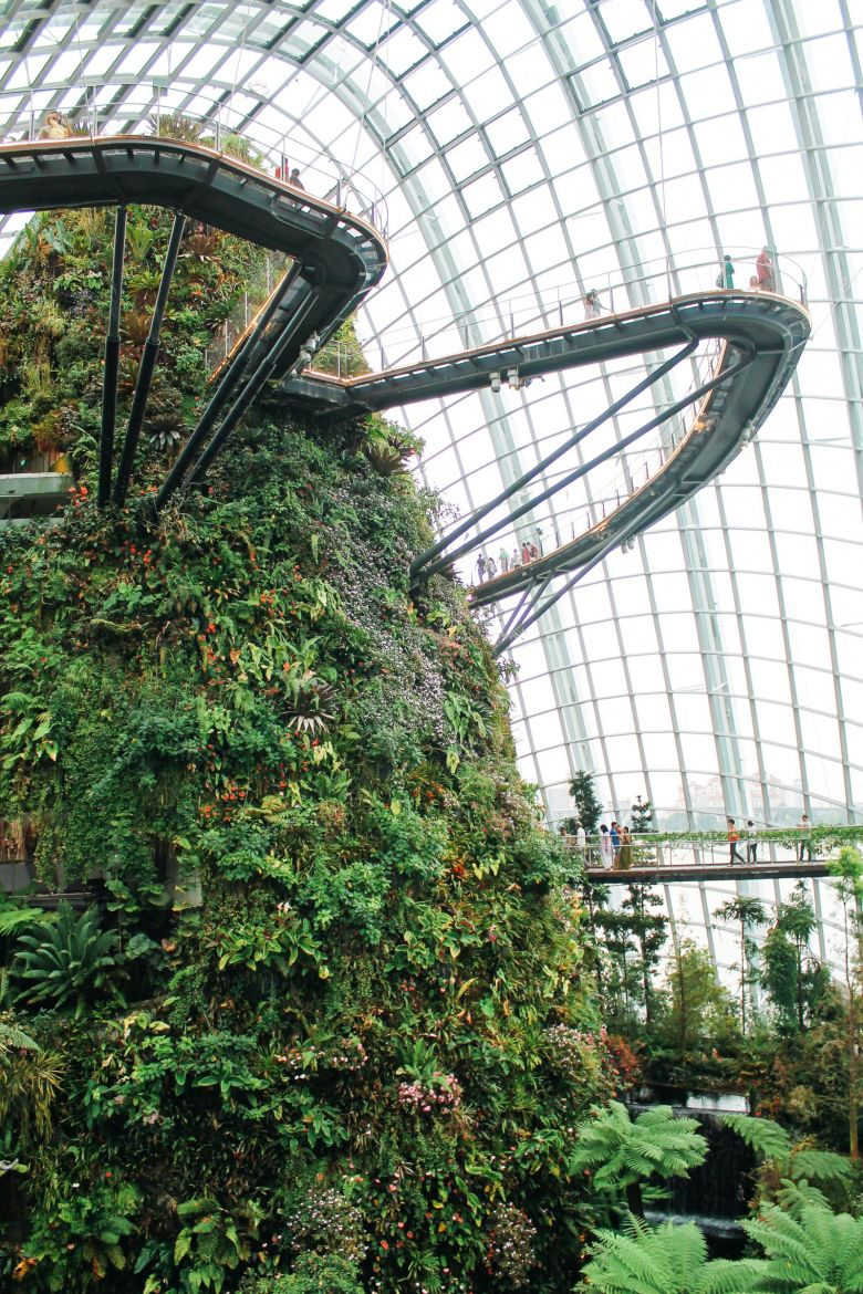 Under The Dome And Into The Forest... In Singapore, Flower Dome and Cloud Forest, Gardens By The Bay (16)