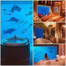 Underwater Hotels Dubai Rooms