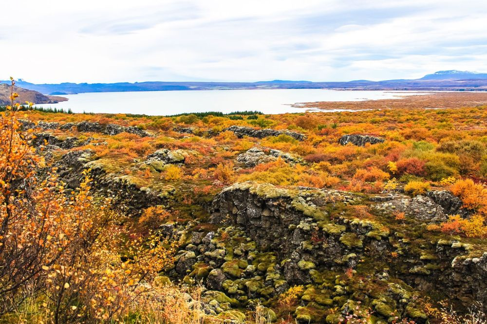 The Northern Lights, Eyjafjallajökull And Þingvellir National Park (7)