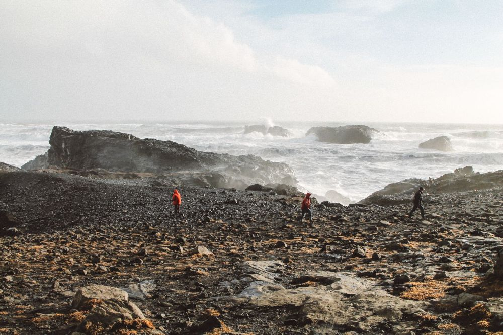 Dyrhólaey, Iceland - A Photo Diary... (4)