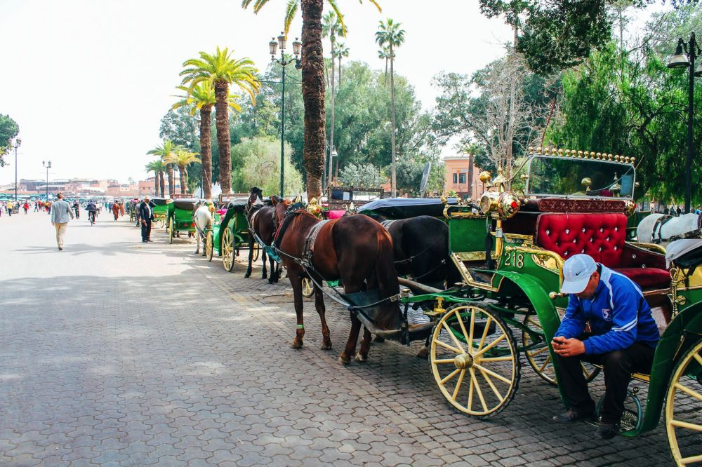 Bahia Palace... Marrakesh, Morocco. A Photo Diary. (3)