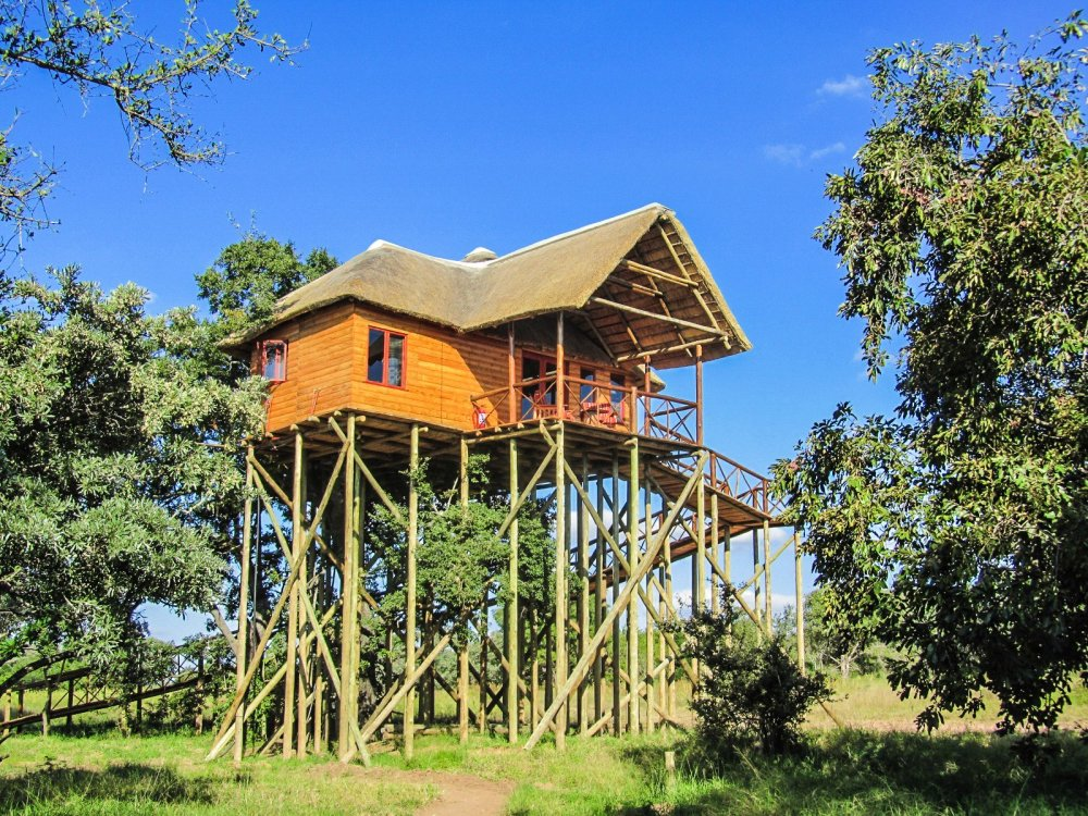 10 Gloriously Quirky Tree Houses To Visit This Year! (16)