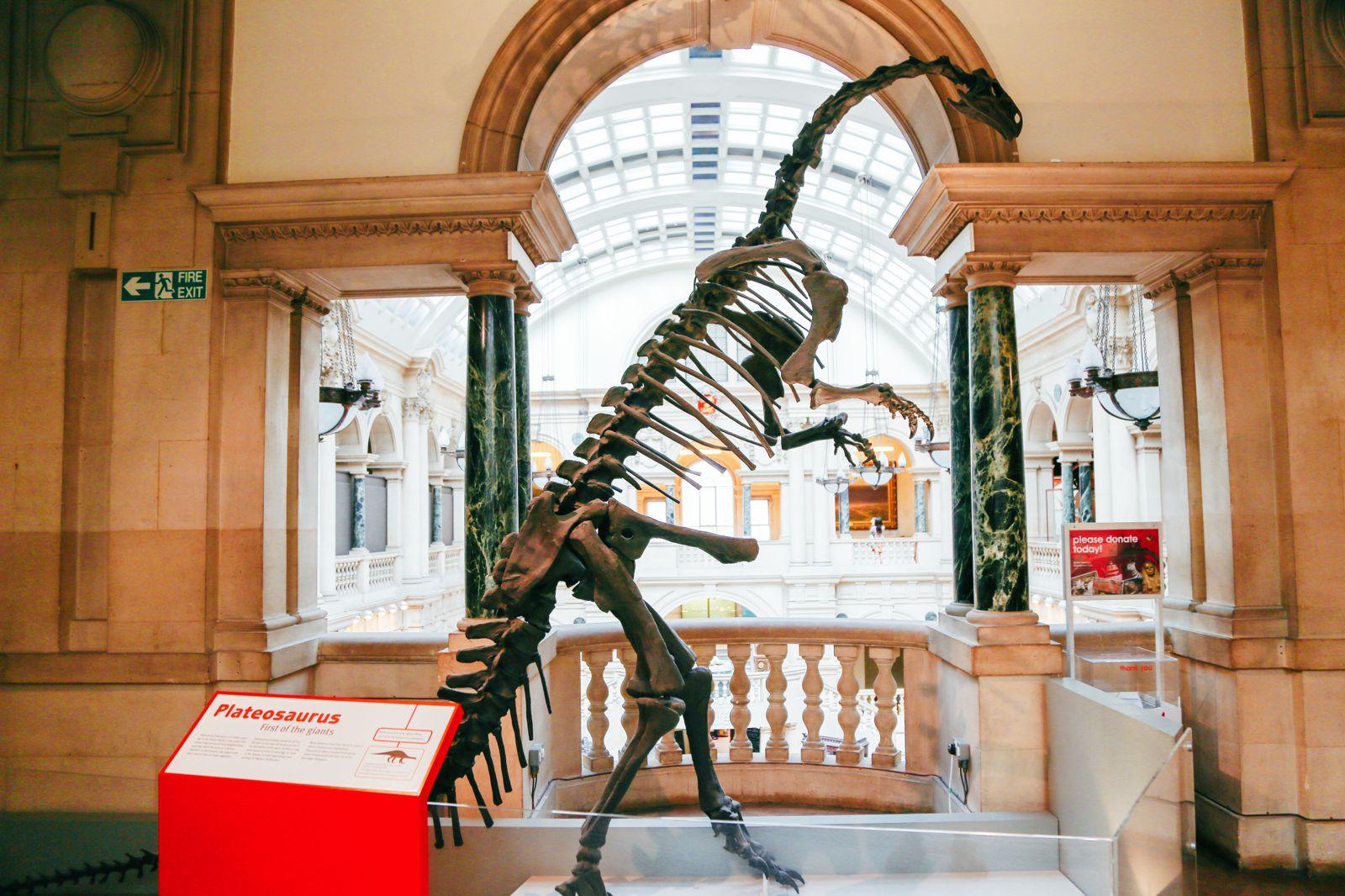 Gothic Bristol, Vintage Cameras, Dinosaurs And Trolls! (27)
