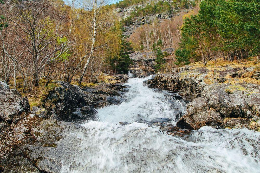 Fjord Safari... in Flam, Norway (34)